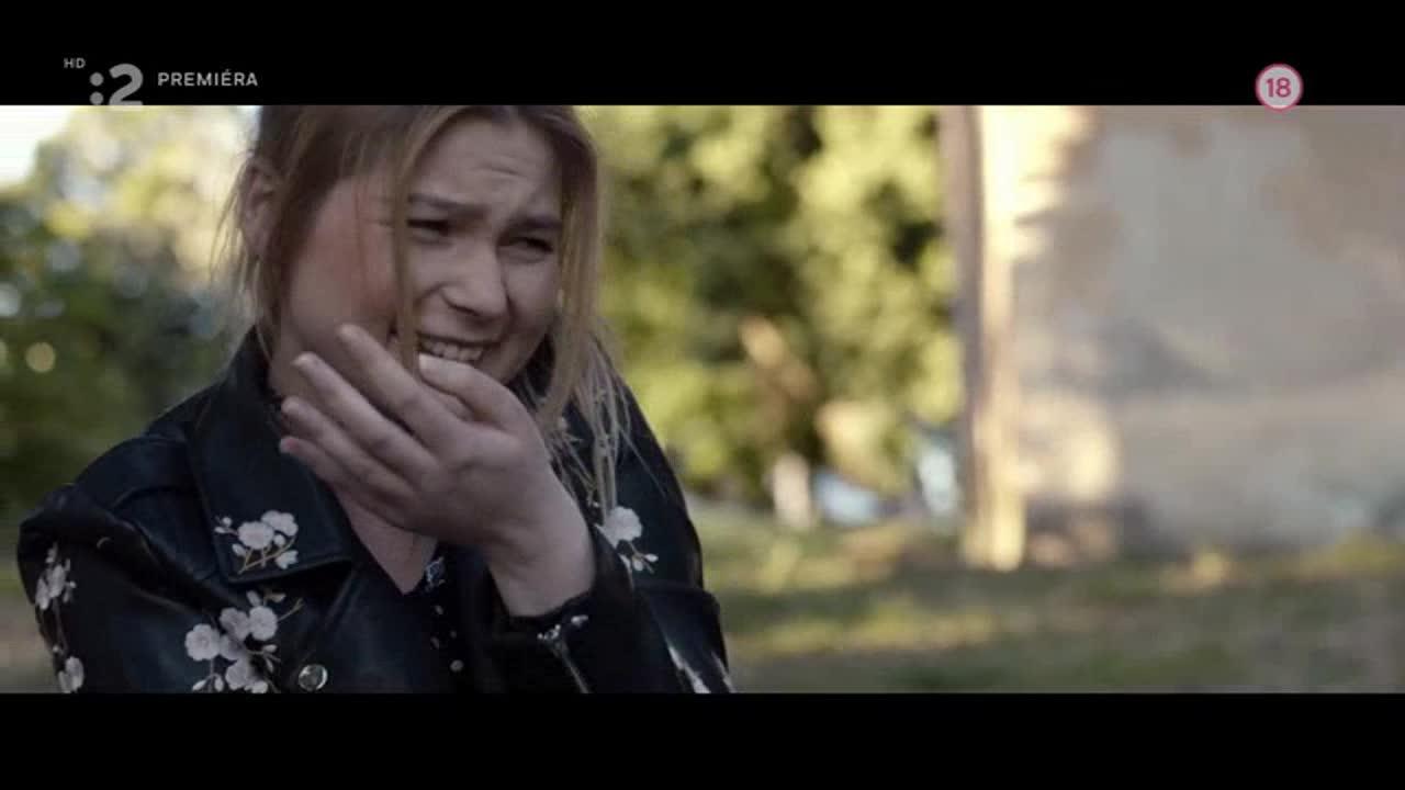 Pivnica 2018  SK film HD