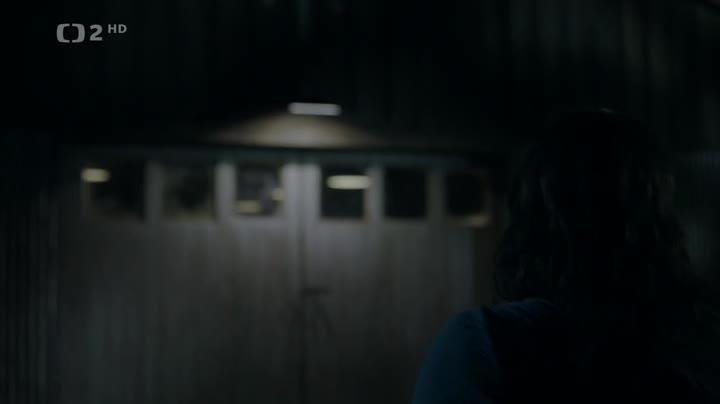 Hrisna duse S02E06 CZ dabing