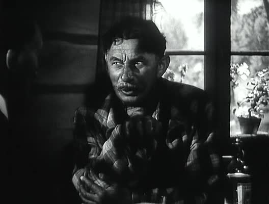 Ryba na Suchu   Film   1942   Komedie   Vlasta Burian
